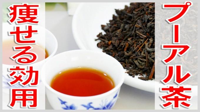 痩る お茶 プーアル茶の効用