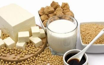 痩せる 食べ物 ランキング 大豆食品