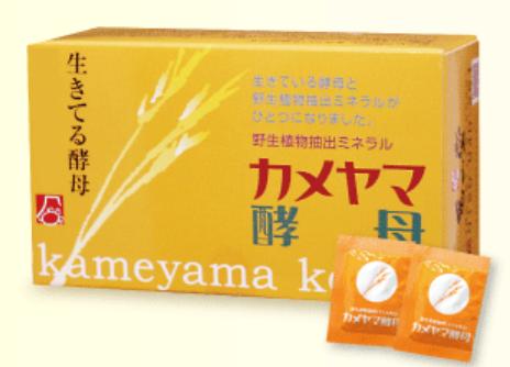 痩る サプリ 10代 カメヤマ酵母